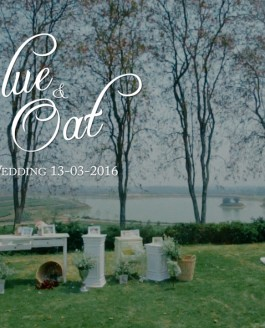 Blue + Oat, The Wedding Day